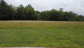 0 Tortoise Trail, Gillespie, IL 62033