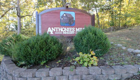237 Anthonies Mill Road, Bourbon, MO 65441