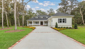222 Hallowes Cove, St Johns, FL 32259