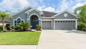 224 Willow Winds pkwy, St Johns, FL 32259
