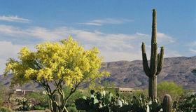 8206 S Diamond H Ranch Place #l-290, Vail, AZ 85641
