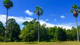 408 Lacosta Villa CT, St Augustine, FL 32095