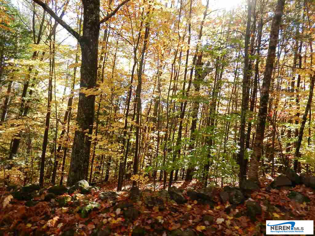 Another Property Sold - 60 Sawyer Lake Road, Gilmanton, NH 03237