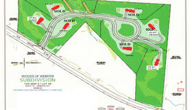 Lot 49 Blackberry Lane, Webster, NH 03303