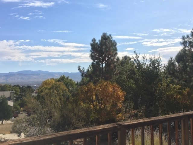 Another Property Sold - 197 Lotus Circle, Carson City, NV 89703