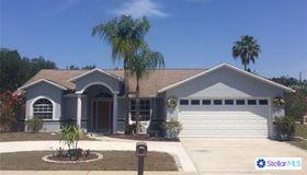 22813 Cypress Trail Drive, Lutz, FL 33549