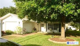 10824 Sierra Nevada Drive, Port Richey, FL 34668
