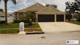 1742 Wood Brook Street, Tarpon Springs, FL 34689