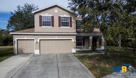 12505 Bay Branch Court, Tampa, FL 33635