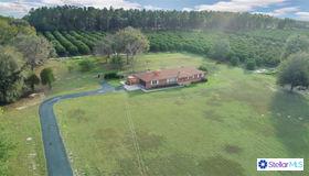 3712 Griffin View Drive, Lady Lake, FL 32159