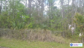 Trespass Trail, Astor, FL 32102