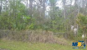 Trespass Trail, Astor, FL 32102