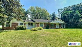 3678 East Lake Drive, Land O Lakes, FL 34639