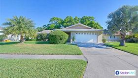 2842 Wildwood Drive, Clearwater, FL 33761