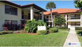 513 Hammock Pine Boulevard ##513, Clearwater, FL 33761
