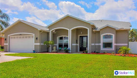 21812 Carson Drive, Land O Lakes, FL 34639