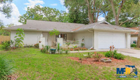 917 Benninger Drive, Brandon, FL 33510