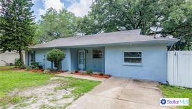 113 Siobhan Avenue, Tampa, FL 33613
