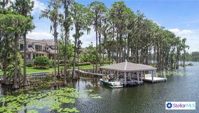 9912 Lake Louise Drive, Windermere, FL 34786