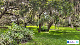 Lakeshore Drive, Yalaha, FL 34797