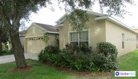 722 Parsons Pointe Street, Seffner, FL 33584