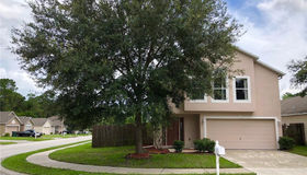 30249 Birdhouse Drive, Wesley Chapel, FL 33545