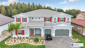 29104 Picana Lane, Wesley Chapel, FL 33543