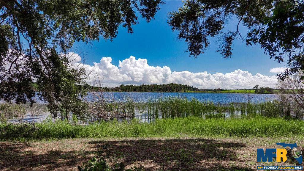 Another Property Sold - Lake Emma Road, Groveland, FL 34736