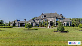 17324 Ballmont Park Drive, Odessa, FL 33556