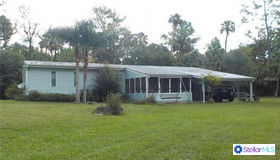 24421 Trespass Trail, Astor, FL 32102