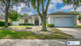 9905 Cypress Shadow Avenue, Tampa, FL 33647