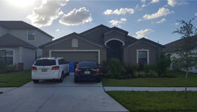 11827 Thicket Wood Drive, Riverview, FL 33579