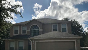 1338 Dragon Head Drive, Valrico, FL 33594