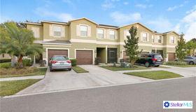 1709 Ivory Goose Place, Ruskin, FL 33570