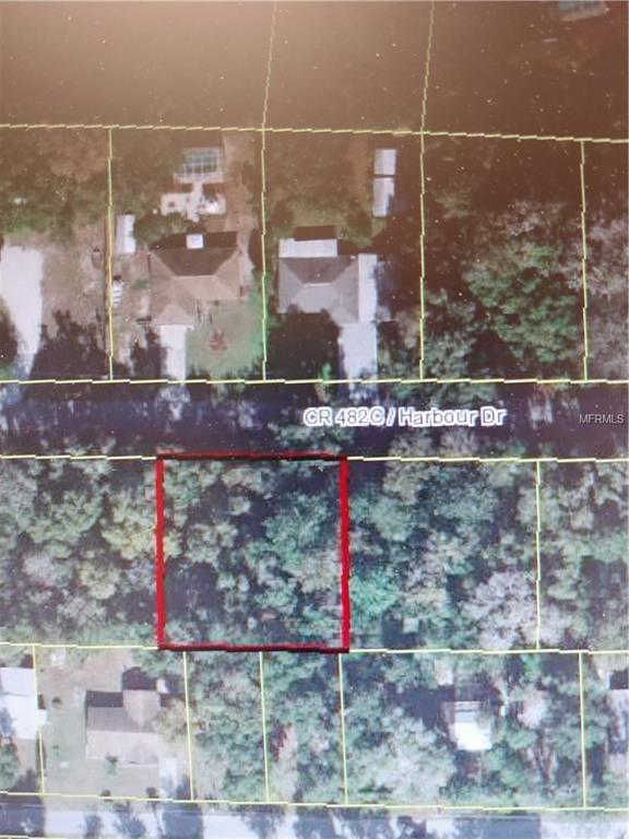 Another Property Sold - CR 482C, Lake Panasoffkee, FL 33538
