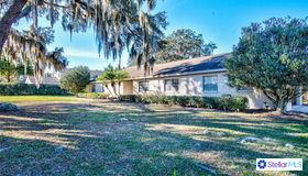 1312 Ivywood Drive, Brandon, FL 33510