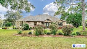 5575 Fairway Drive, Ridge Manor, FL 33523
