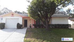 10541 Mosquero Drive, Port Richey, FL 34668