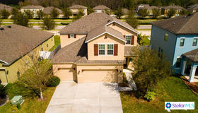 5488 Angelonia Terrace, Land O Lakes, FL 34639