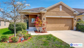 8224 Summer Wood Lane, Riverview, FL 33578