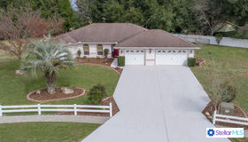 808 Crestview Circle E, Wildwood, FL 34785