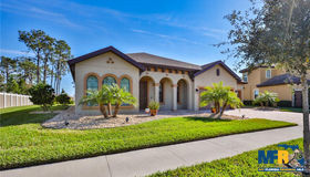 13202 Fawn Lily Drive, Riverview, FL 33579