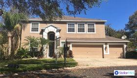 1706 Woodwatch Way, Brandon, FL 33510