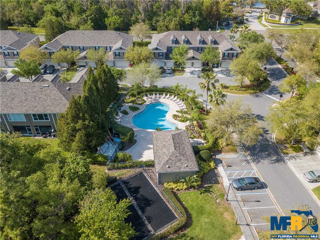 11086 Windsor Place Circle, Tampa, FL 33626 is now new to the market!