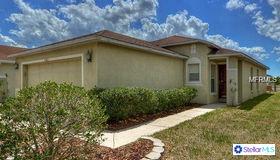 11045 Golden Silence Drive, Riverview, FL 33579