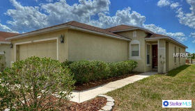 11045 Golden Silence Drive, Riverview, FL 33579