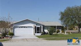 8229 Tarsier Avenue, New Port Richey, FL 34653