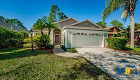 10406 Springrose Drive, Tampa, FL 33626