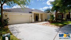 7047 Derwent Glen Circle, Land O Lakes, FL 34637