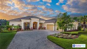 17324 Ladera Estates Boulevard, Lutz, FL 33548